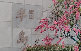上海【上海·樾山半岛】